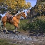 Important Details Relating to eso gold