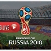 FIFA World Cup Live